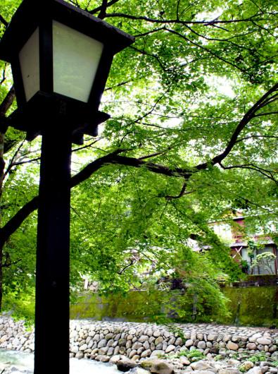 静岡の修善寺に行ってきました