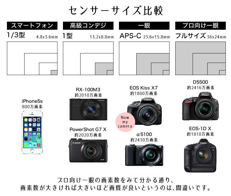 デジタルカメラセンサーサイズ比較