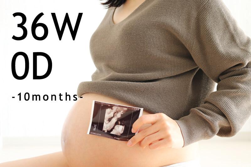 【出産準備】産後のベビー用品まとめ:その1(36週目)
